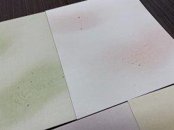 画像5: 【40%OFF】歌用大色紙 No.18 (5枚入)