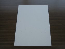画像1: 白銀 半懐紙